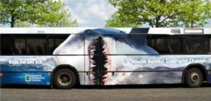 shark-bus-2