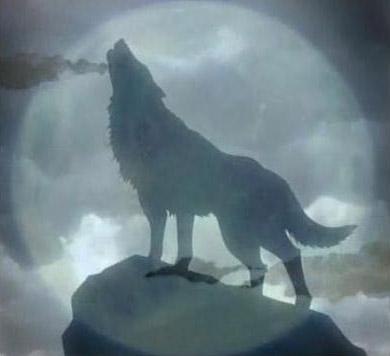 ADEN's stuff Lonewolf